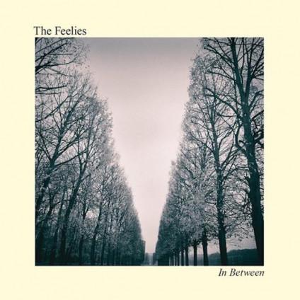 In Between - Feelies - LP