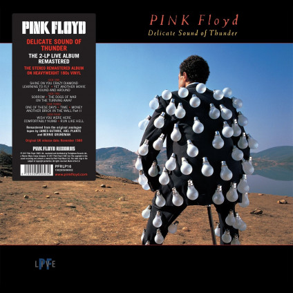 Delicate Sound Of Thunder - Pink Floyd - LP
