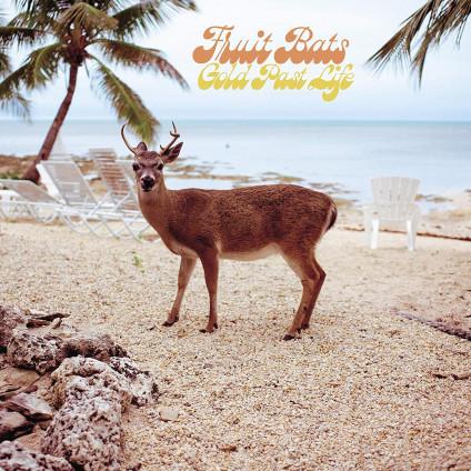 Gold Past Life - Fruit Bats - LP