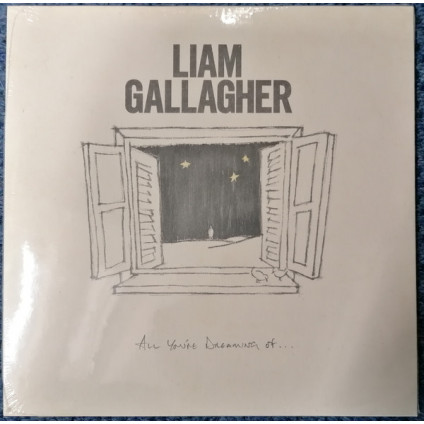 All You're Dreaming Of... - Liam Gallagher - LP