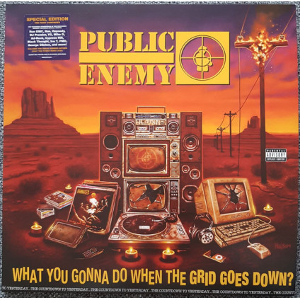 What You Gonna Do When The Grid Goes Down? - Public Enemy - LP